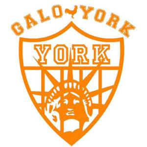 GALO YORK